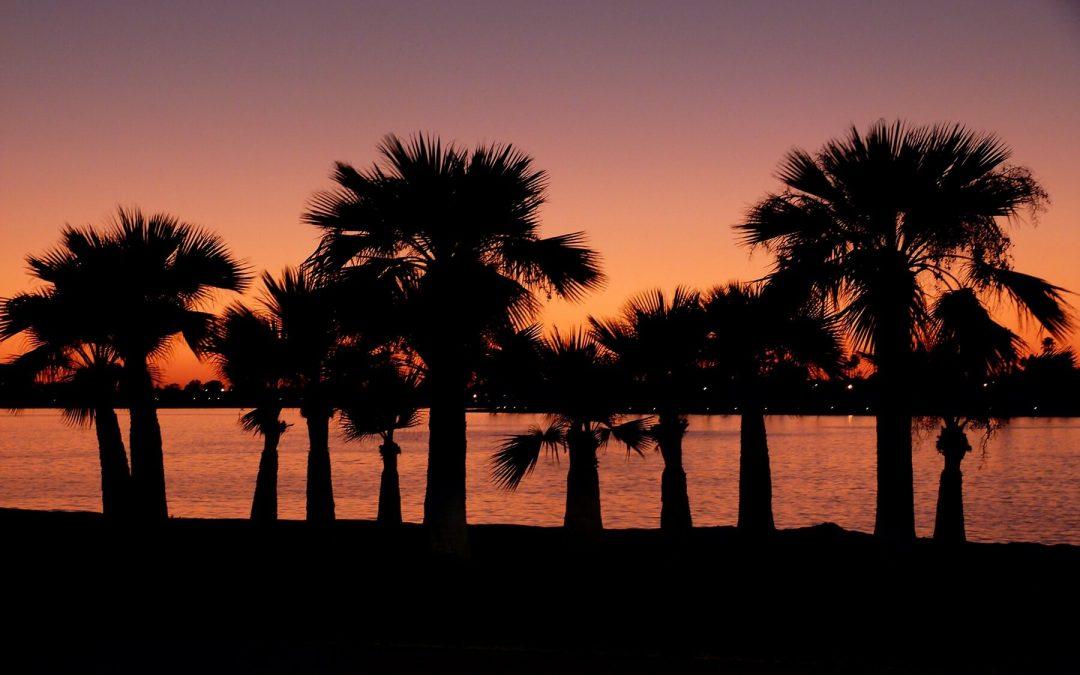 3 Reasons to Take a San Diego Road Trip